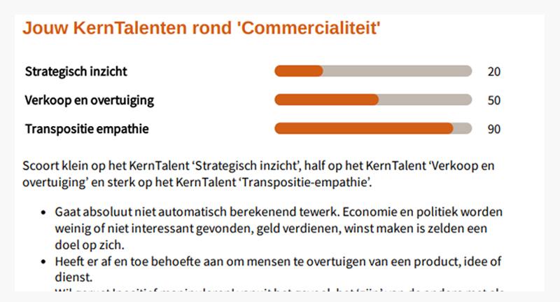 WaW - Talentscan - Voorbeeld KernTalent